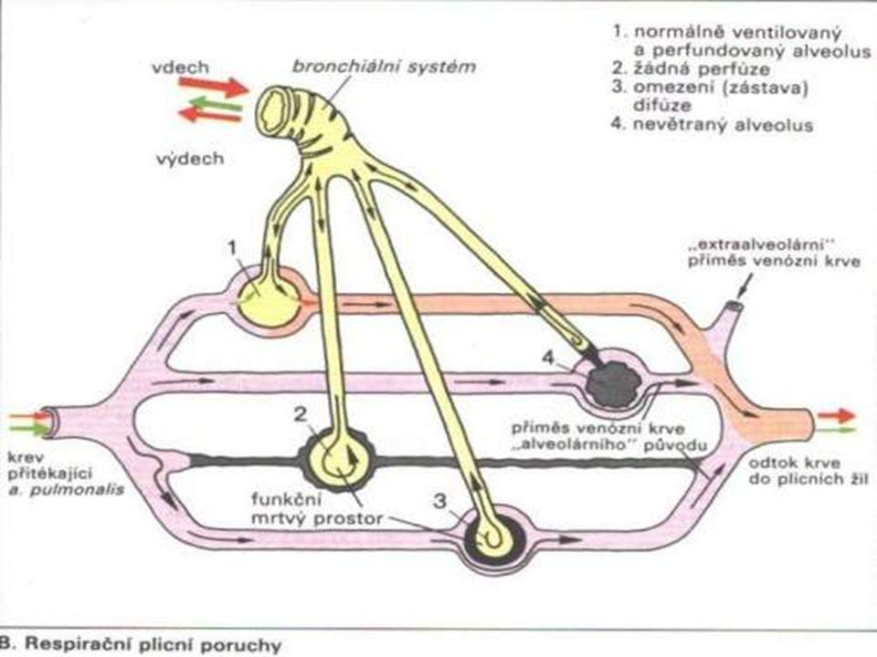 Emfyzém - funkční důsledky Destrukce alveolární stěny → ztráta plicní elastičnosti → exspirační obstrukce (↓ dynamické parametry) → plicní hyperinflace → ↑RV/TLC (nevýhodné postavení inspiračních svalů) → redukce kapilárního řečiště → ↓difúzní plicní kapacita → plicní hypertenze →ventilačně perfuzní nerovnováha (↑V'/Q')