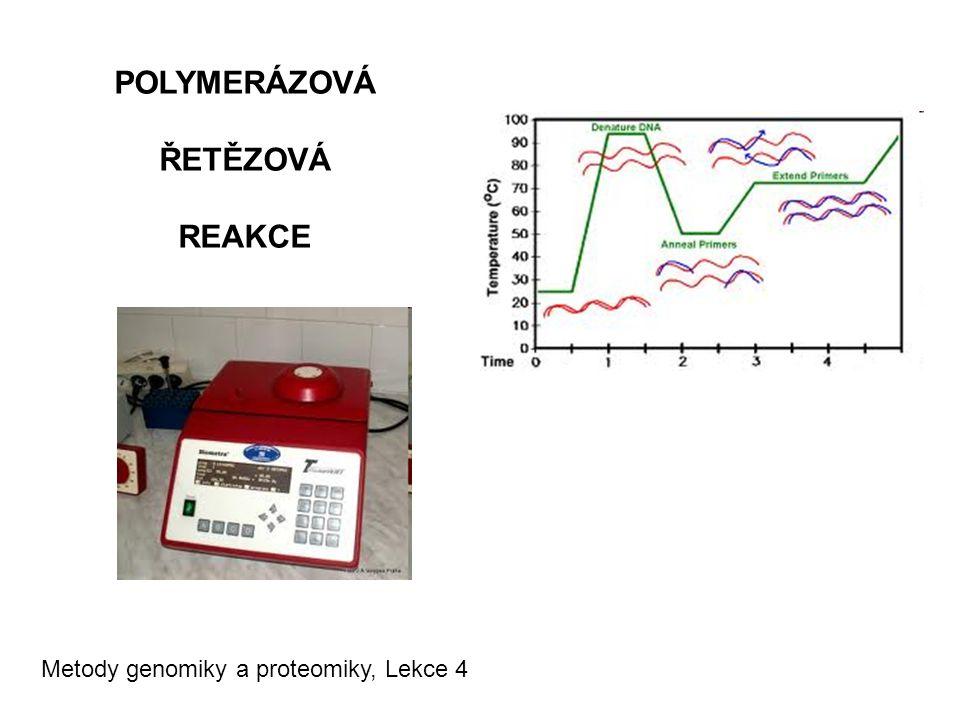 Metody genomiky a proteomiky, Lekce 4 POLYMERÁZOVÁ ŘETĚZOVÁ REAKCE
