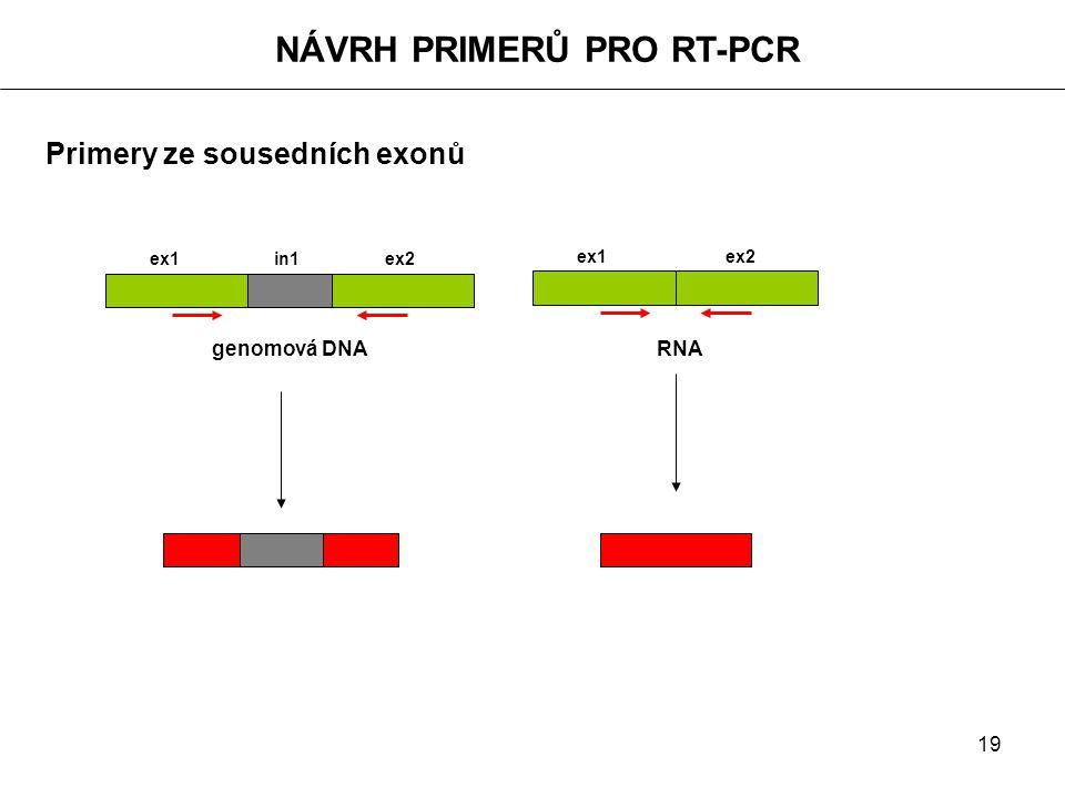 19 NÁVRH PRIMERŮ PRO RT-PCR Primery ze sousedních exonů ex1 in1 ex2 genomová DNA RNA ex1 ex2