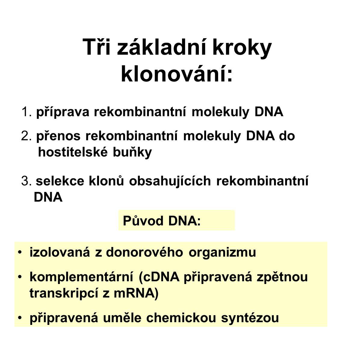 Tři základní kroky klonování: 1.příprava rekombinantní molekuly DNA 2.