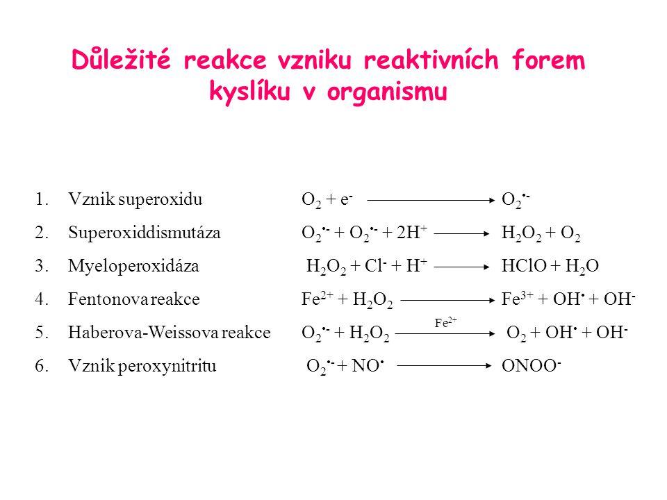 Důležité reakce vzniku reaktivních forem kyslíku v organismu 1.Vznik superoxiduO 2 + e - O 2- 2.SuperoxiddismutázaO 2- + O 2- + 2H + H 2 O 2 + O 2 3.M