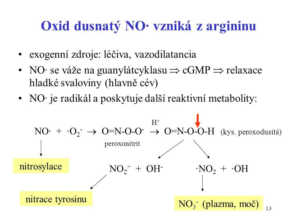 13 Oxid dusnatý NO· vzniká z argininu exogenní zdroje: léčiva, vazodilatancia NO· se váže na guanylátcyklasu  cGMP  relaxace hladké svaloviny (hlavn