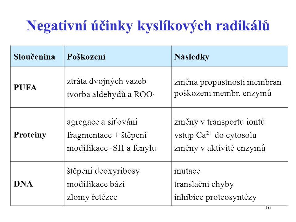 16 Negativní účinky kyslíkových radikálů SloučeninaPoškozeníNásledky PUFA ztráta dvojných vazeb tvorba aldehydů a ROO· změna propustnosti membrán pošk