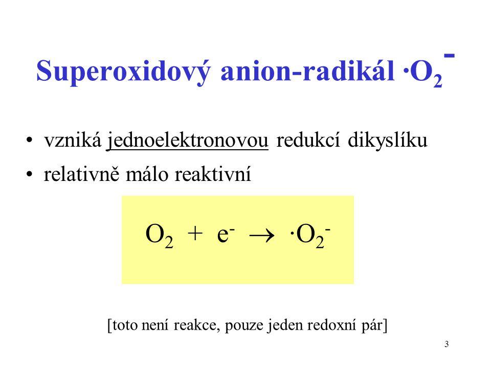 3 Superoxidový anion-radikál ·O 2 - vzniká jednoelektronovou redukcí dikyslíku relativně málo reaktivní O 2 + e -  ·O 2 - [toto není reakce, pouze je