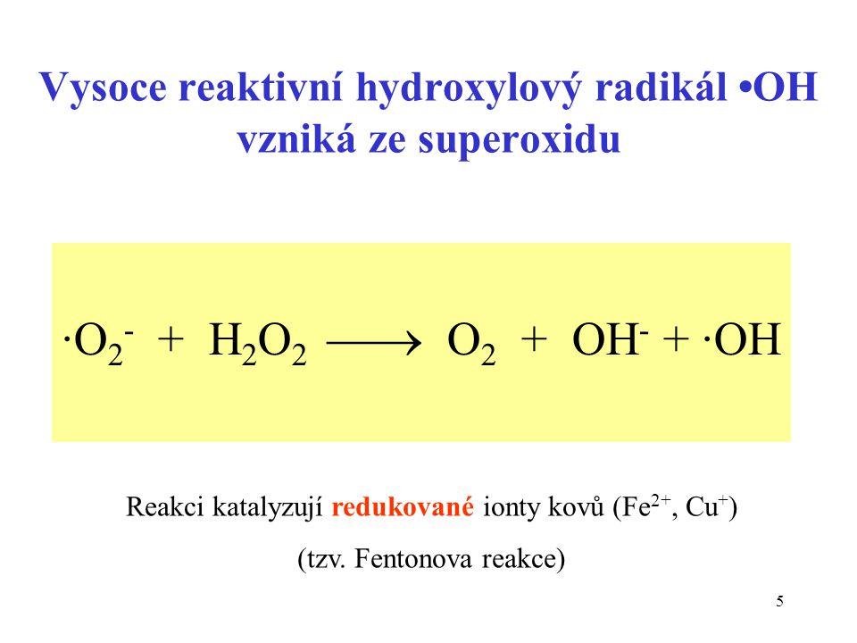 5 Vysoce reaktivní hydroxylový radikál OH vzniká ze superoxidu ·O 2 - + H 2 O 2  O 2 + OH - + ·OH Reakci katalyzují redukované ionty kovů (Fe 2+, Cu