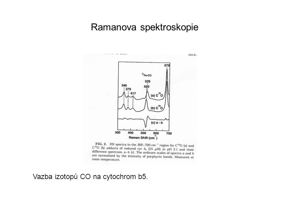 Ramanova spektroskopie Analýza mutantů Leu88Asp Prakticky totožná CD spektra RR: 1482, 1565 – 6 koordinační Fe, s vysokým spinem 1505, 1582 – 6 koordinační, nízký spin divoký kmen a mutant prakticky totožné