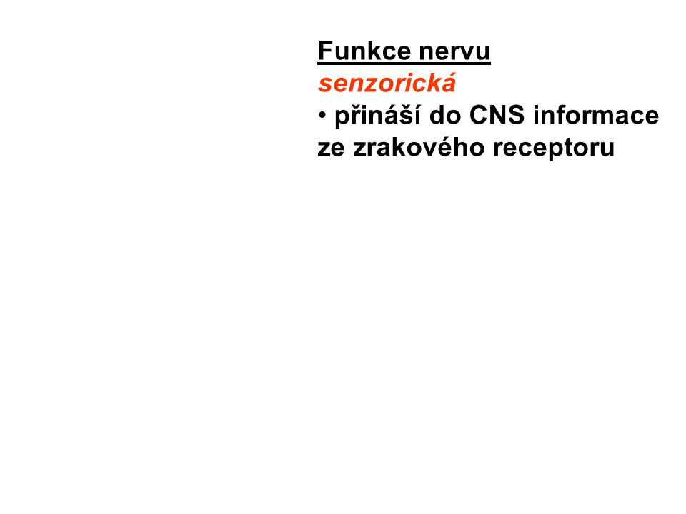 n.zygomaticus (kůže tváře) n.