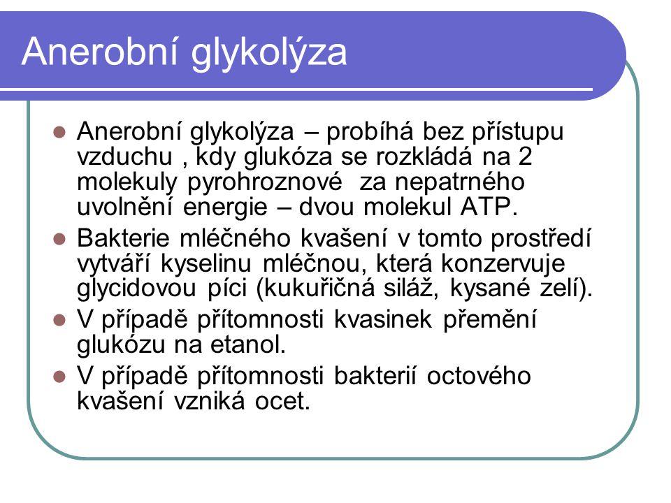 Anerobní glykolýza Anerobní glykolýza – probíhá bez přístupu vzduchu, kdy glukóza se rozkládá na 2 molekuly pyrohroznové za nepatrného uvolnění energie – dvou molekul ATP.