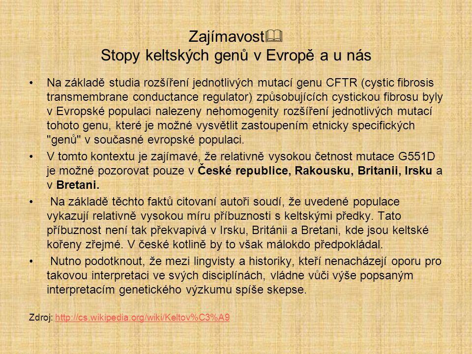 Keltové a Brno Zdroj: http://mojebrno.wz.cz/inka--morava- keltove-konvice-malomerice-b.jpghttp://mojebrno.wz.cz/inka--morava- keltove-konvice-malomerice-b.jpg Zdroj: http://mojebrno.wz.cz/inka--morava-keltove-konvice- malomerice-a.jpghttp://mojebrno.wz.cz/inka--morava-keltove-konvice- malomerice-a.jpg Jak bys popsal umění Keltů?