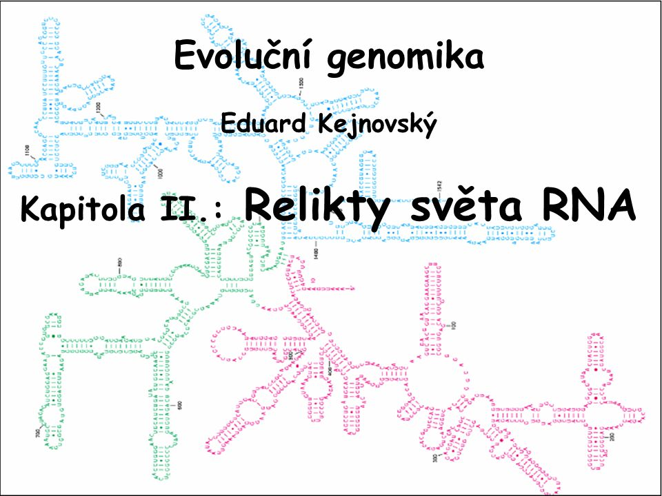 - cirkulární - jedna molekula - operony obsahující - mnohé RNA nahrazeny proteiny - lineární - fragmentovaný - introny obsahující - RNA molekuly potřebné pro úpravy RNA ODVOZENÝ GENOMPÚVODNÍ GENOM EUKARYOTAPROKARYOTA Mechanizmus přechodu LIN CIRK genomů na modelu retrovirů: - transkripce retroviru spolu s genem a přepsání do DNA a cirkularizace - množství cirkulárních molekul s různými geny, jejich rekombinace a zvětšování - selekční zvýhodnění cirkulárních molekul (termostabilita a rychlejší replikace)