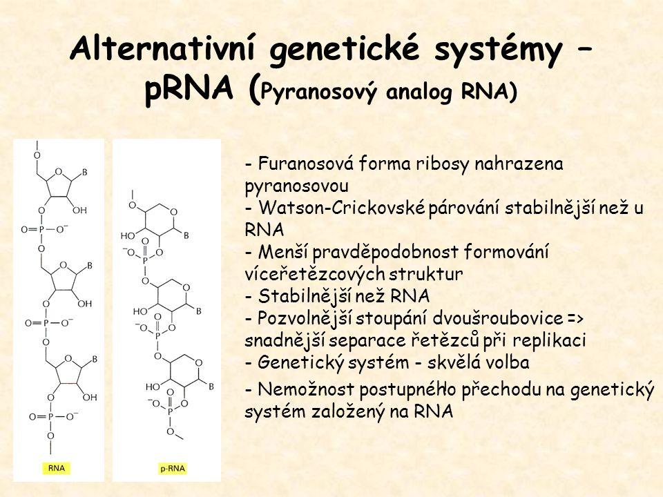 Alternativní genetické systémy – pRNA ( Pyranosový analog RNA) - Furanosová forma ribosy nahrazena pyranosovou - Watson-Crickovské párování stabilnějš