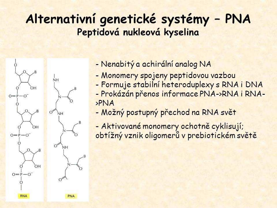 Alternativní genetické systémy – PNA Peptidová nukleová kyselina - Nenabitý a achirální analog NA - Monomery spojeny peptidovou vazbou - Formuje stabi