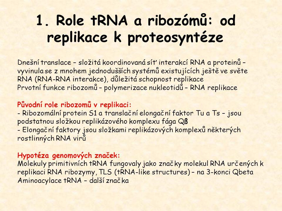 1. Role tRNA a ribozómů: od replikace k proteosyntéze Dnešní translace – složitá koordinovaná síť interakcí RNA a proteinů – vyvinula se z mnohem jedn