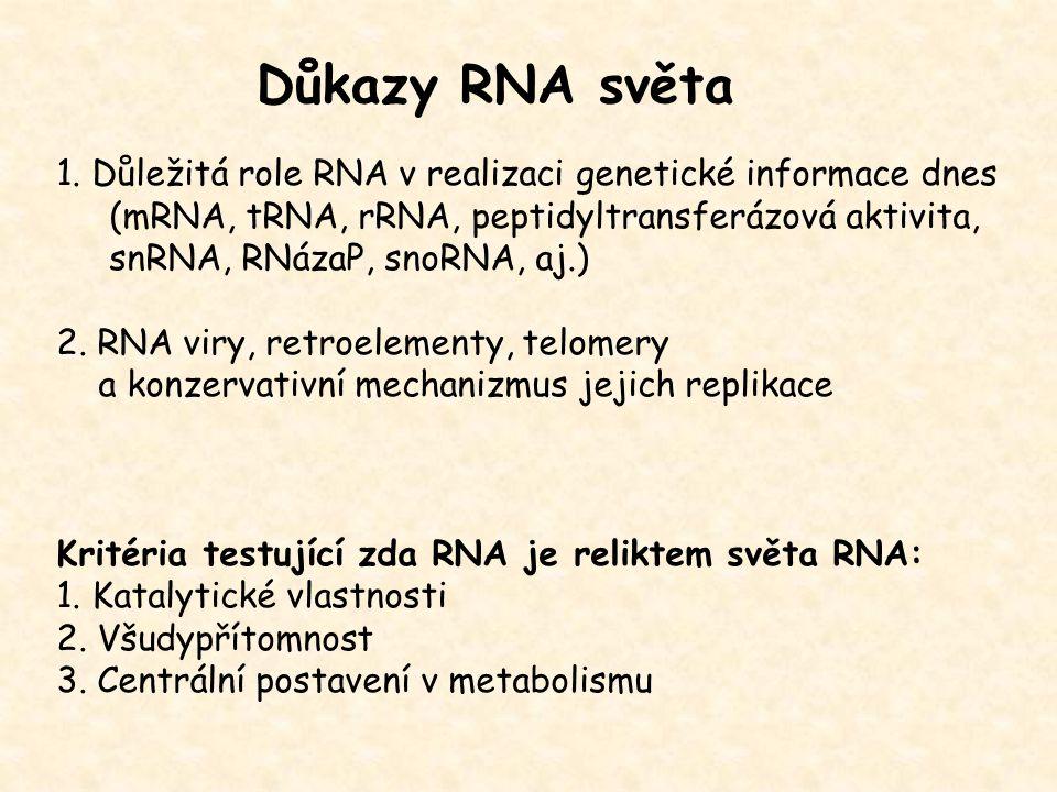 Centrální role RNA v dnešních biologických systémech mRNA – jediný templát pro proteosyntézu, - sestřih pomocí snRNA tRNA – přináší AK na ribozómy, - sestřih pomocí RNázyP (ribozym) rRNA – součást ribozómů, - tvorba peptidové vazby, - sestřih pomocí snoRNA