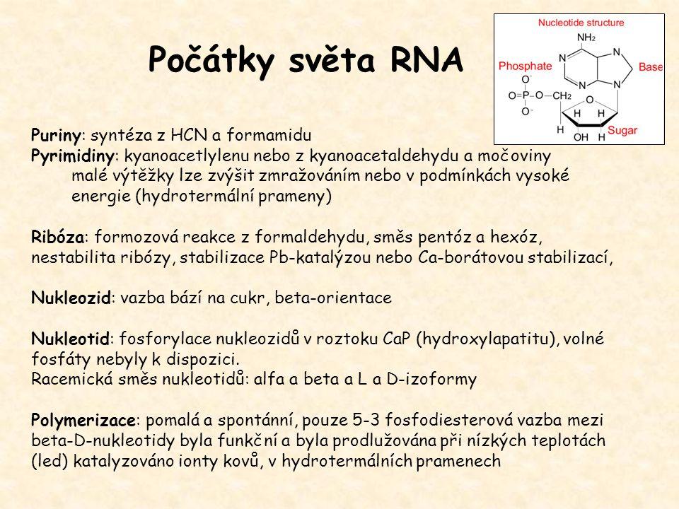 Počátky světa RNA Puriny: syntéza z HCN a formamidu Pyrimidiny: kyanoacetlylenu nebo z kyanoacetaldehydu a močoviny malé výtěžky lze zvýšit zmražování