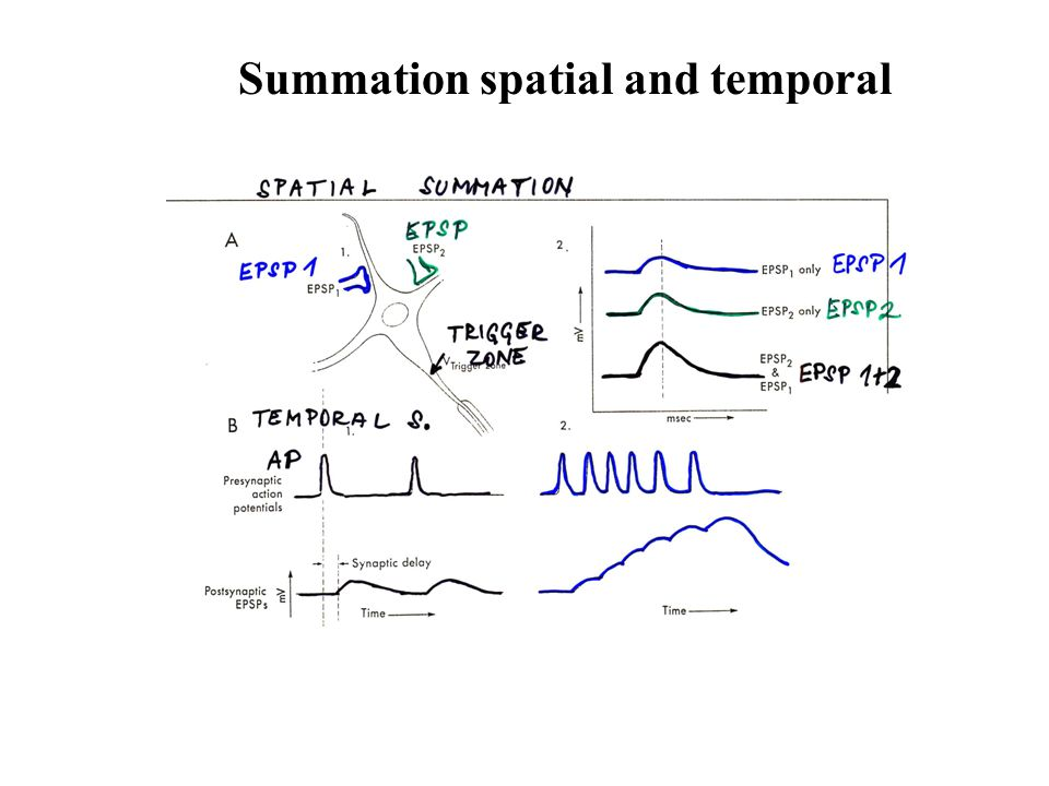 Summation spatial and temporal