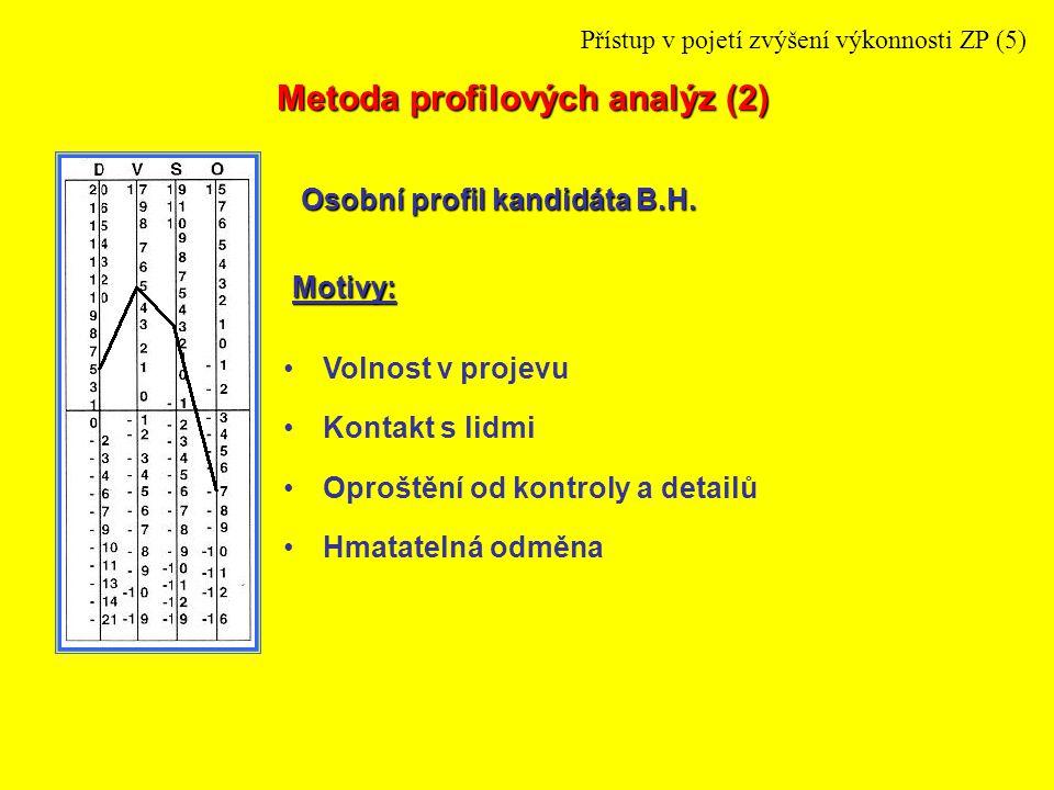 Využití odborných znalostí Práce v soukromí Precizní určení práce Motivy: Osobní profil kandidáta J.S.