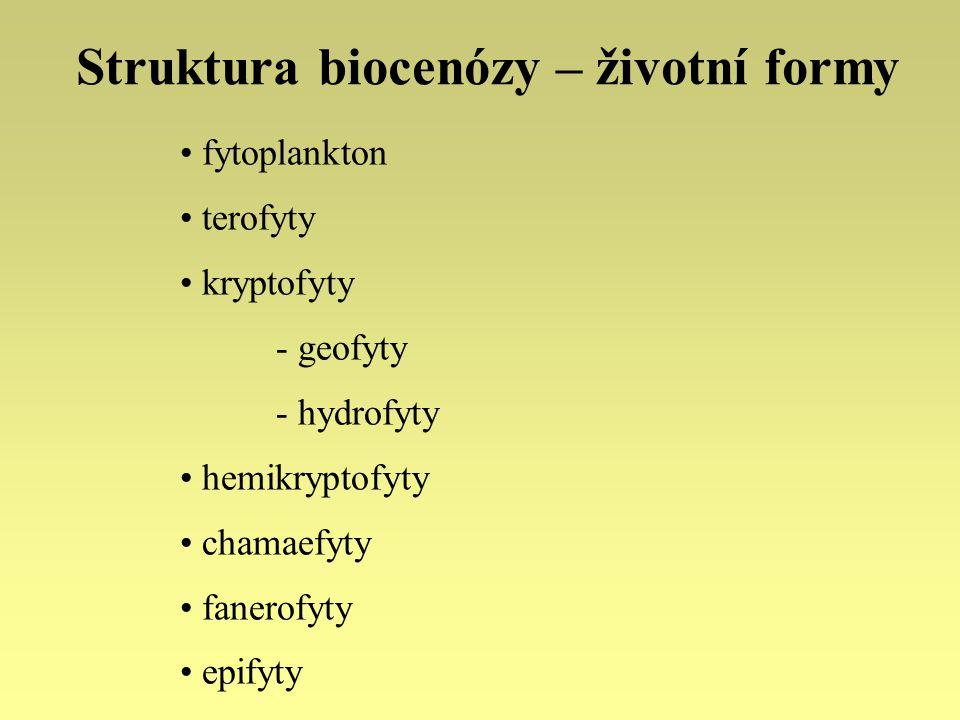 Struktura biocenózy – životní formy fytoplankton terofyty kryptofyty - geofyty - hydrofyty hemikryptofyty chamaefyty fanerofyty epifyty