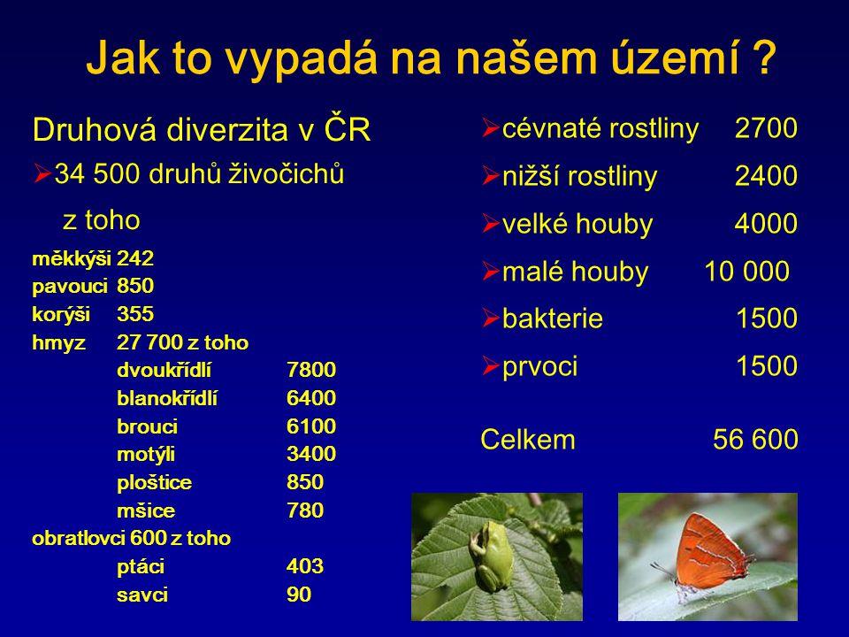 Druhová diverzita v ČR  34 500 druhů živočichů z toho měkkýši 242 pavouci 850 korýši 355 hmyz 27 700 z toho dvoukřídlí 7800 blanokřídlí 6400 brouci 6100 motýli 3400 ploštice850 mšice 780 obratlovci 600 z toho ptáci 403 savci 90 Jak to vypadá na našem území .