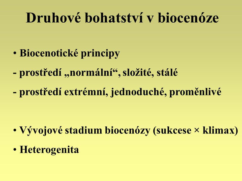 """Druhové bohatství v biocenóze Biocenotické principy - prostředí """"normální"""", složité, stálé - prostředí extrémní, jednoduché, proměnlivé Vývojové stadi"""