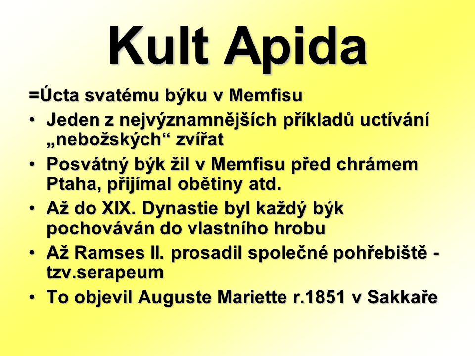 """Kult Apida =Úcta svatému býku v Memfisu Jeden z nejvýznamnějších příkladů uctívání """"nebožských zvířat Posvátný býk žil v Memfisu před chrámem Ptaha, přijímal obětiny atd."""