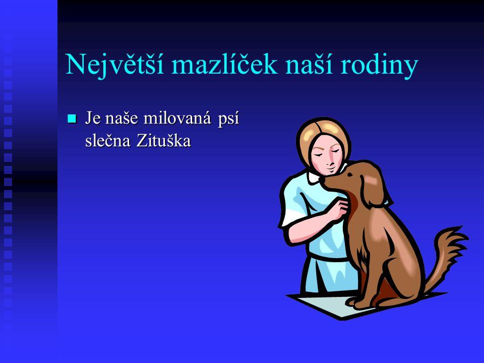 Největší mazlíček naší rodiny Je naše milovaná psí slečna Zituška Je naše milovaná psí slečna Zituška
