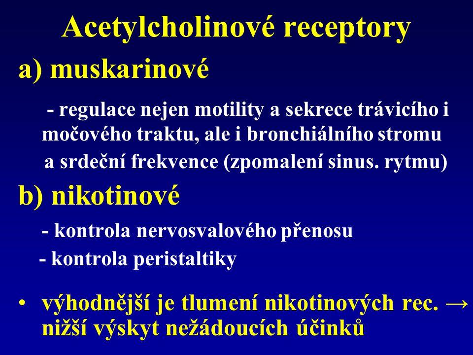 Acetylcholinové receptory a) muskarinové - regulace nejen motility a sekrece trávicího i močového traktu, ale i bronchiálního stromu a srdeční frekvence (zpomalení sinus.