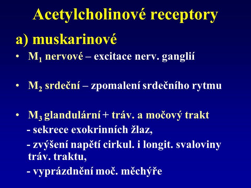 Acetylcholinové receptory a) muskarinové M 1 nervové – excitace nerv.