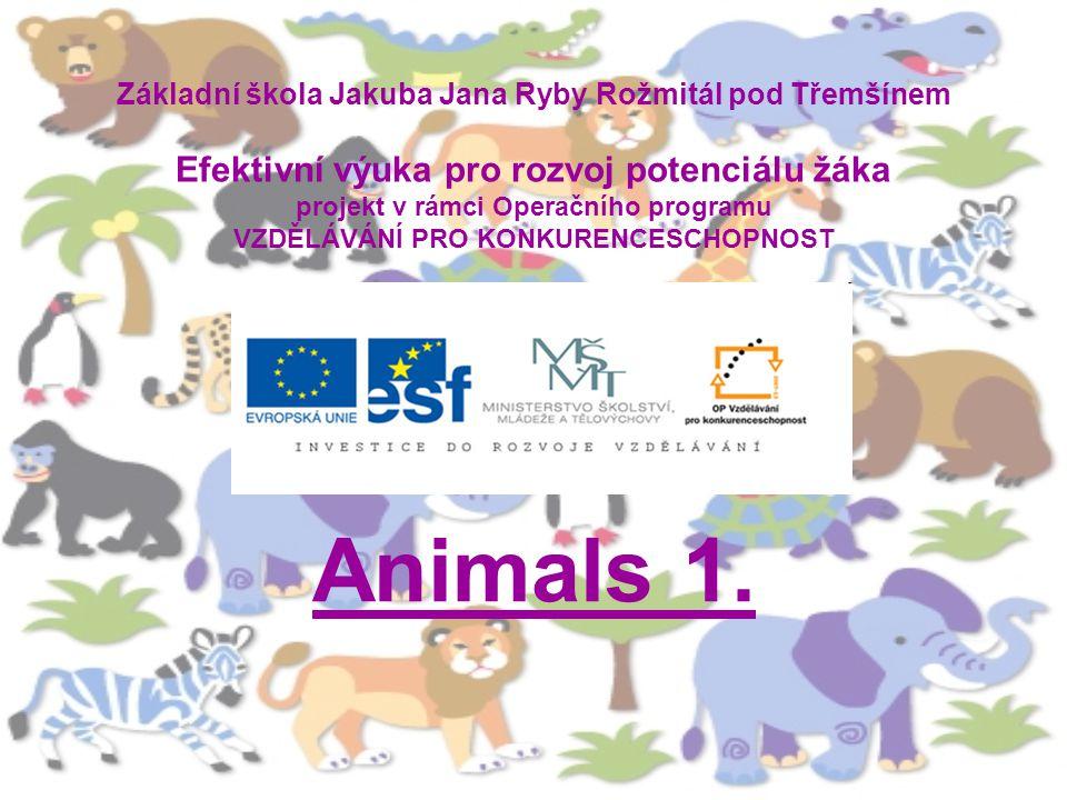 Základní škola Jakuba Jana Ryby Rožmitál pod Třemšínem Efektivní výuka pro rozvoj potenciálu žáka projekt v rámci Operačního programu VZDĚLÁVÁNÍ PRO KONKURENCESCHOPNOST Animals 1.