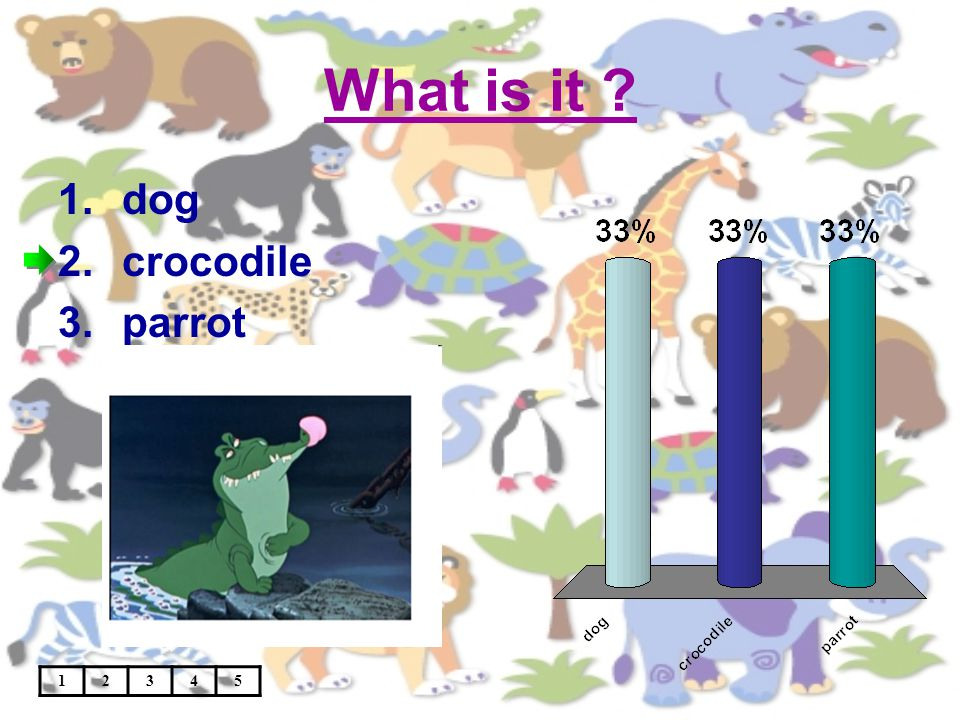 What is it ? 12345 1.dog 2.crocodile 3.parrot