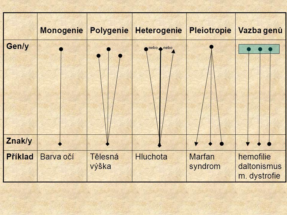 MonogeniePolygenieHeterogeniePleiotropieVazba genů Gen/y nebo nebo Znak/y PříkladBarva očíTělesná výška HluchotaMarfan syndrom hemofilie daltonismus m