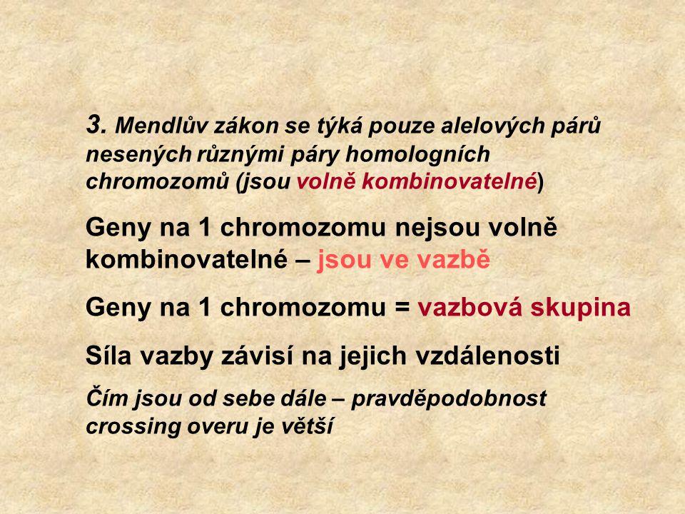 3. Mendlův zákon se týká pouze alelových párů nesených různými páry homologních chromozomů (jsou volně kombinovatelné) Geny na 1 chromozomu nejsou vol