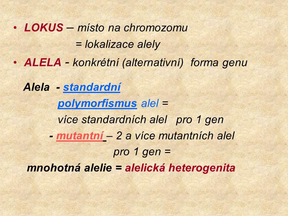 LOKUS – místo na chromozomu = lokalizace alely ALELA - konkrétní (alternativní) forma genu Alela - standardní polymorfismus alel = více standardních a