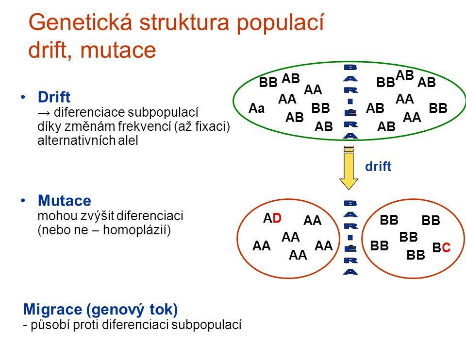 Genetická struktura populací drift, mutace Drift → diferenciace subpopulací díky změnám frekvencí (až fixaci) alternativních alel Mutace mohou zvýšit