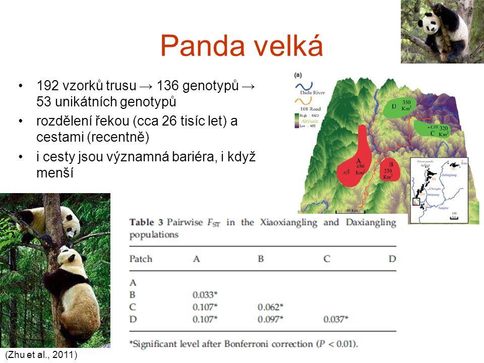 Panda velká 192 vzorků trusu → 136 genotypů → 53 unikátních genotypů rozdělení řekou (cca 26 tisíc let) a cestami (recentně) i cesty jsou významná bar