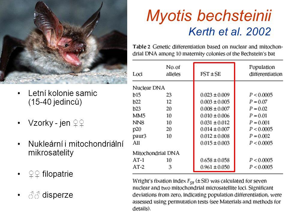 Myotis bechsteinii Kerth et al. 2002 Letní kolonie samic (15-40 jedinců) Vzorky - jen ♀♀ Nukleární i mitochondriální mikrosatelity ♀♀ filopatrie ♂♂ di