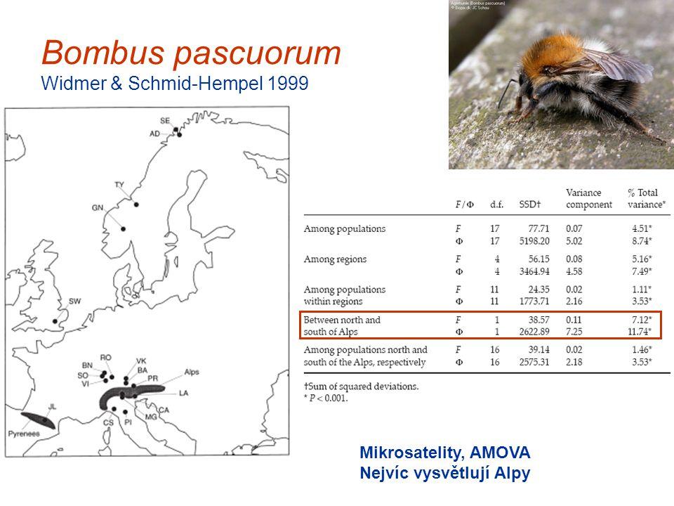 Bombus pascuorum Widmer & Schmid-Hempel 1999 Mikrosatelity, AMOVA Nejvíc vysvětlují Alpy