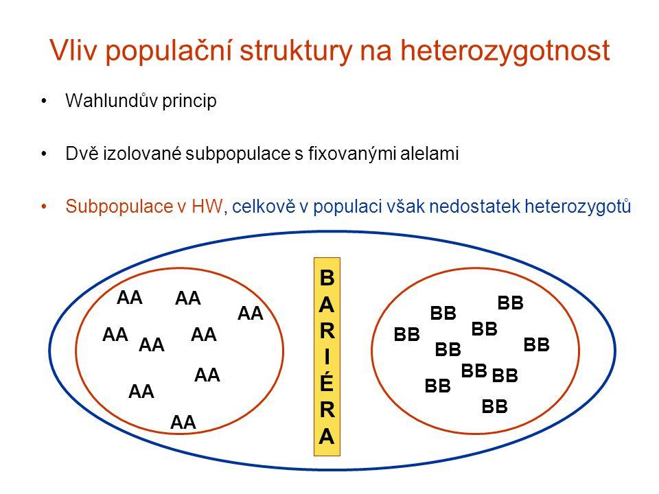 Vliv populační struktury na heterozygotnost Wahlundův princip Dvě izolované subpopulace s fixovanými alelami Subpopulace v HW, celkově v populaci však