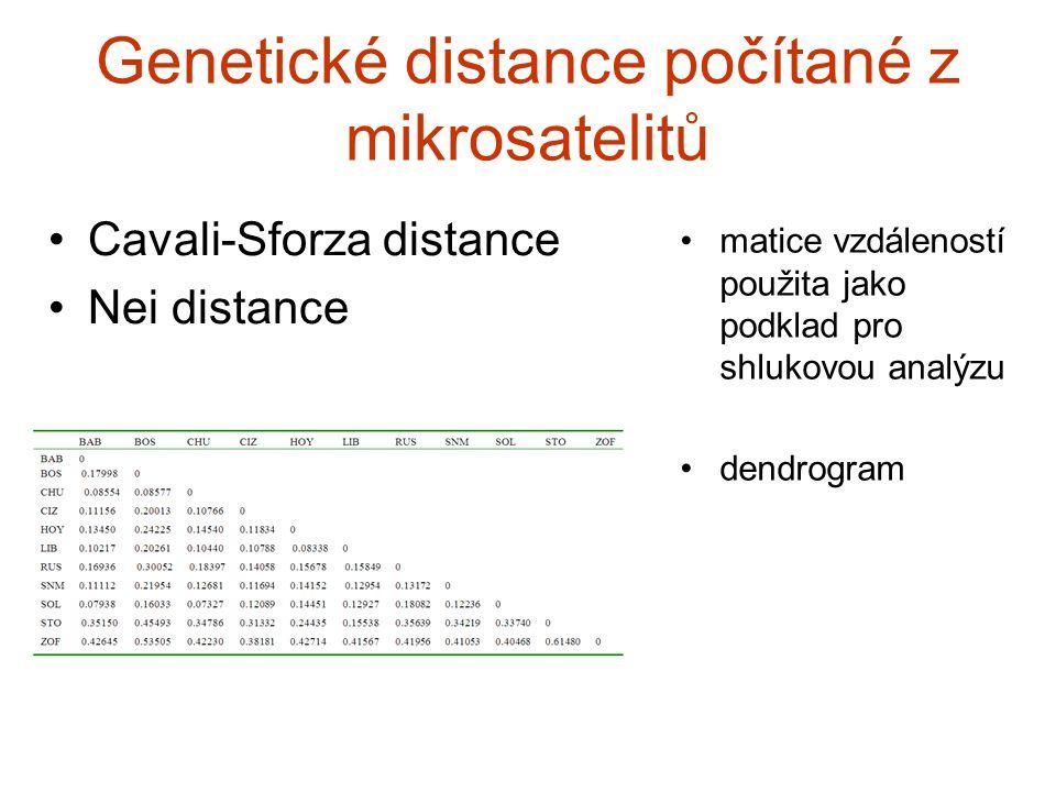Genetické distance počítané z mikrosatelitů Cavali-Sforza distance Nei distance matice vzdáleností použita jako podklad pro shlukovou analýzu dendrogr