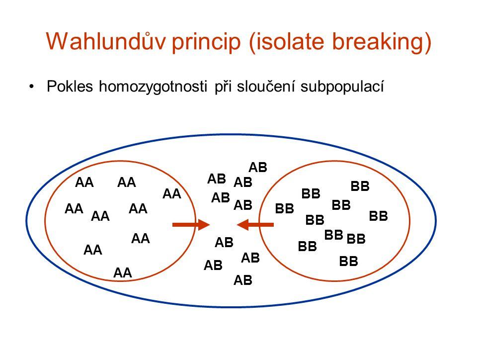 Wahlundův princip - příklad Jezero Bunnersjöarna (severní Švédsko) – brown trout 2 alely na alozymovém markeru A/AA/B (=Ho) B/BTotalp2pq (=He) Přítok500 (0)0501.0000.000 Odtok113 (0.26)36500.1500.255 Celé jezero (expected) 51 (33.1) 13 (0.13) (48.9) 36 (18.1) 1000.5750.489 Ryman et al.