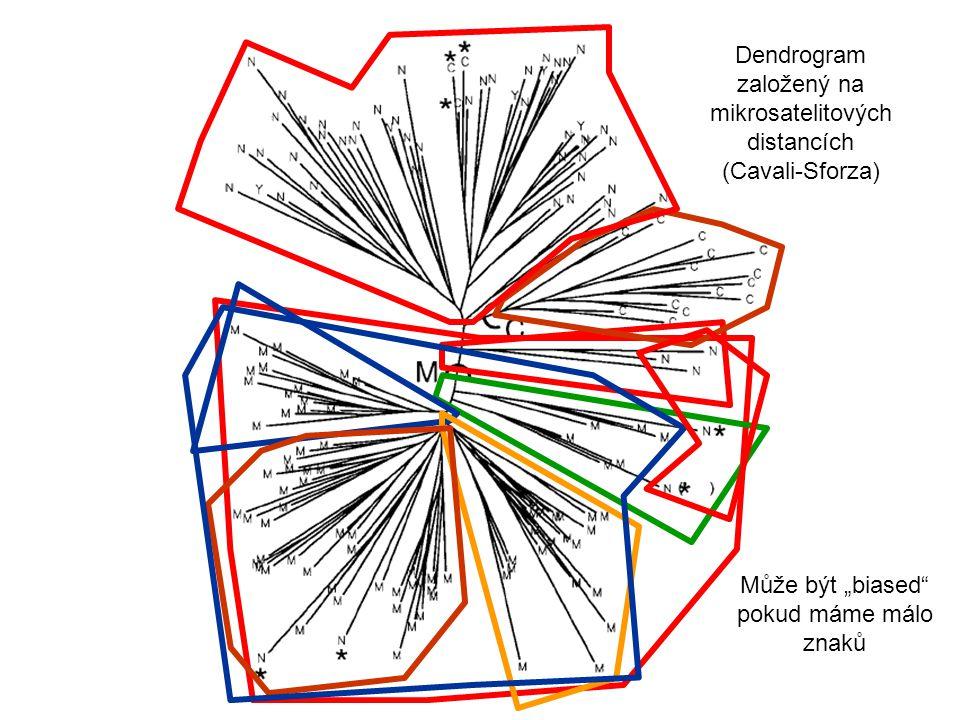 """Dendrogram založený na mikrosatelitových distancích (Cavali-Sforza) Může být """"biased"""" pokud máme málo znaků"""