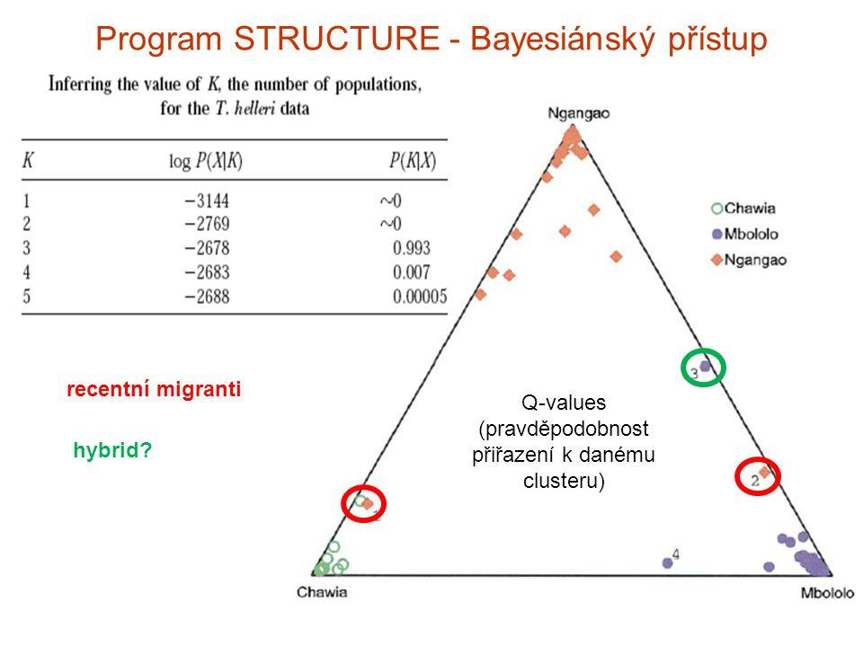 Program STRUCTURE - Bayesiánský přístup recentní migranti hybrid? Q-values (pravděpodobnost přiřazení k danému clusteru)