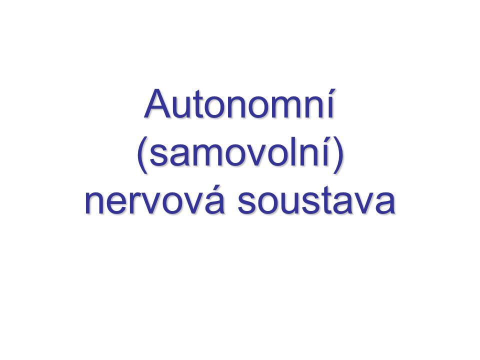 Autonomní (samovolní) nervová soustava