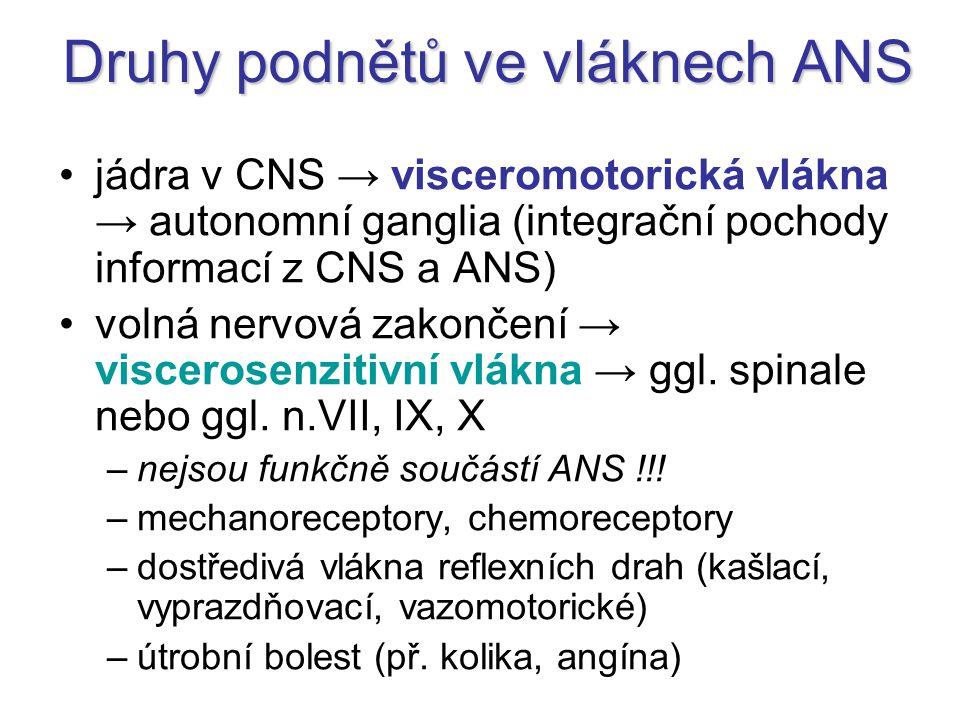 Druhy podnětů ve vláknech ANS jádra v CNS → visceromotorická vlákna → autonomní ganglia (integrační pochody informací z CNS a ANS) volná nervová zakončení → viscerosenzitivní vlákna → ggl.