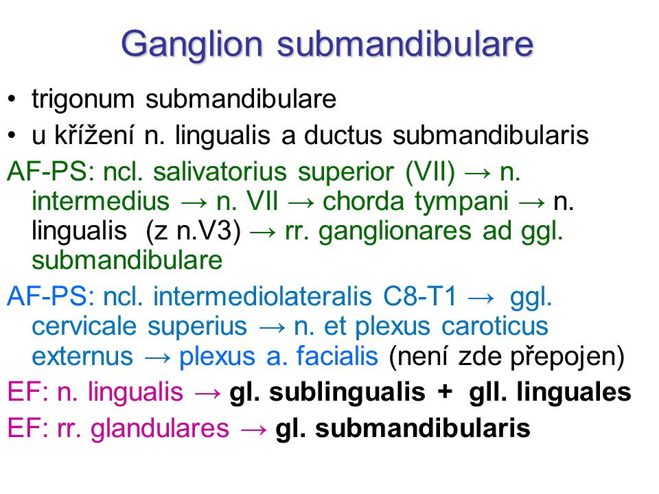 Ganglion submandibulare trigonum submandibulare u křížení n. lingualis a ductus submandibularis AF-PS: ncl. salivatorius superior (VII) → n. intermedi