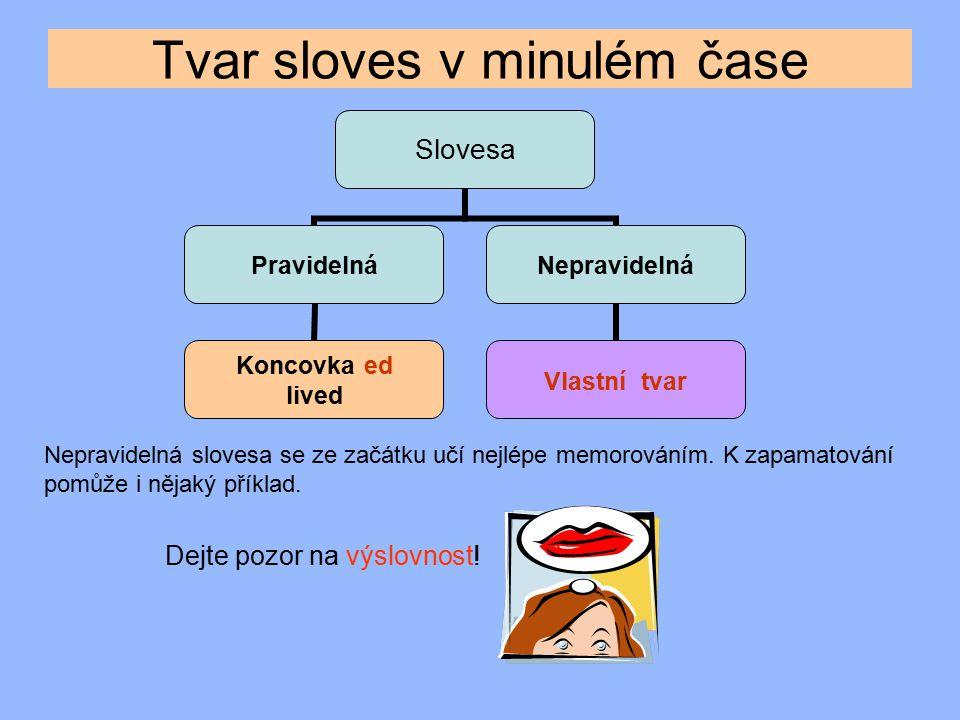 had was / were went ate made came wrote flew drank spoke saw knew  Které sloveso nemá změnu samohlásky.