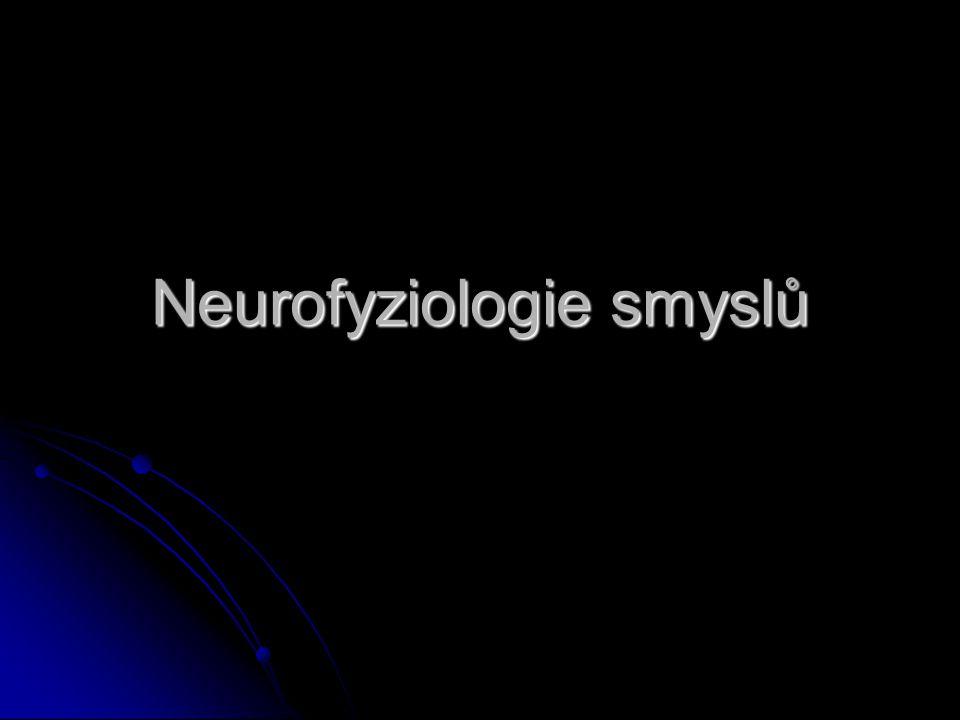 Neurofyziologie Studium nervových a doprovodných buněk, způsobu jak jsou sestaveny do funkčních celků, které vedou a zpracovávají informaci a zprostředkují chování.