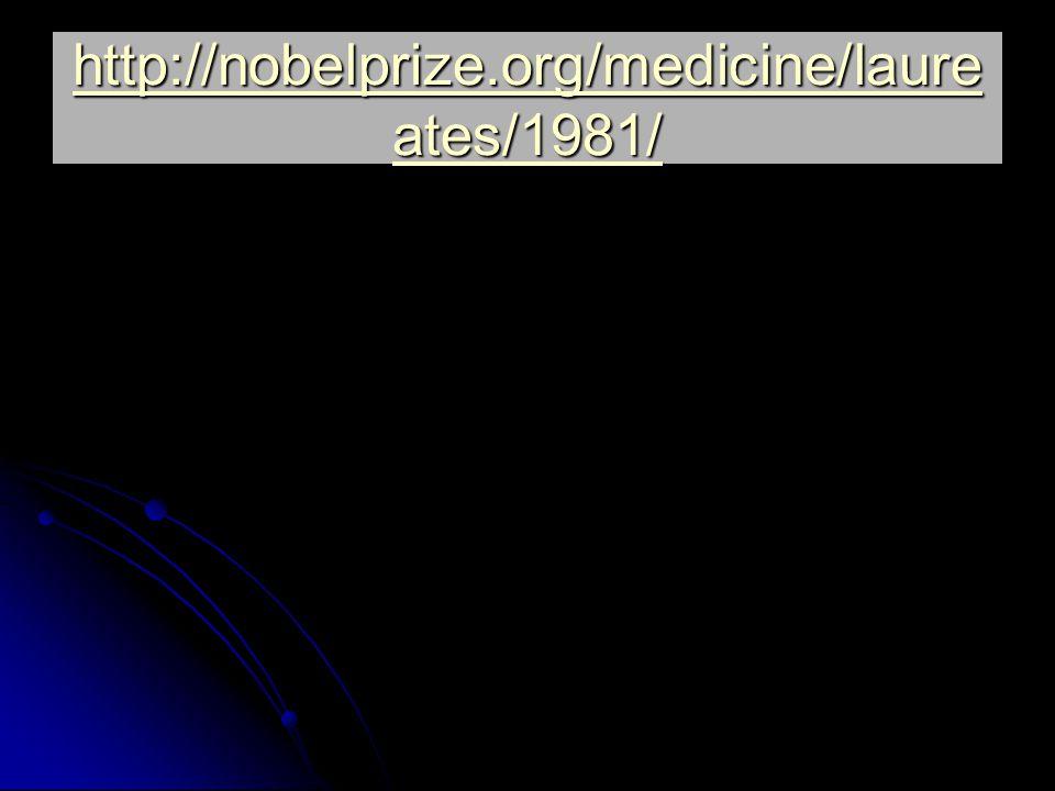 http://nobelprize.org/medicine/laure ates/1981/ http://nobelprize.org/medicine/laure ates/1981/