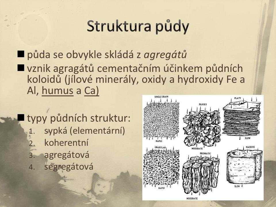 půda se obvykle skládá z agregátů vznik agragátů cementačním účinkem půdních koloidů (jílové minerály, oxidy a hydroxidy Fe a Al, humus a Ca) typy půdních struktur: 1.