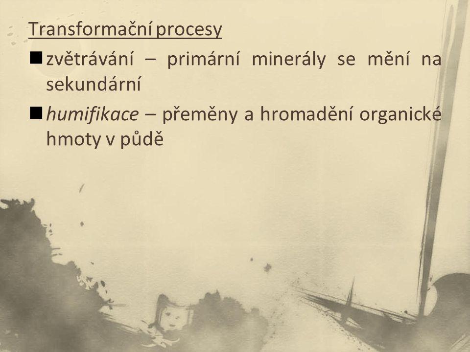 Transformační procesy zvětrávání – primární minerály se mění na sekundární humifikace – přeměny a hromadění organické hmoty v půdě
